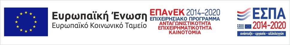 ευρωπαϊκή ένωση ευρωπαϊκό κοινωνικό ταμείο